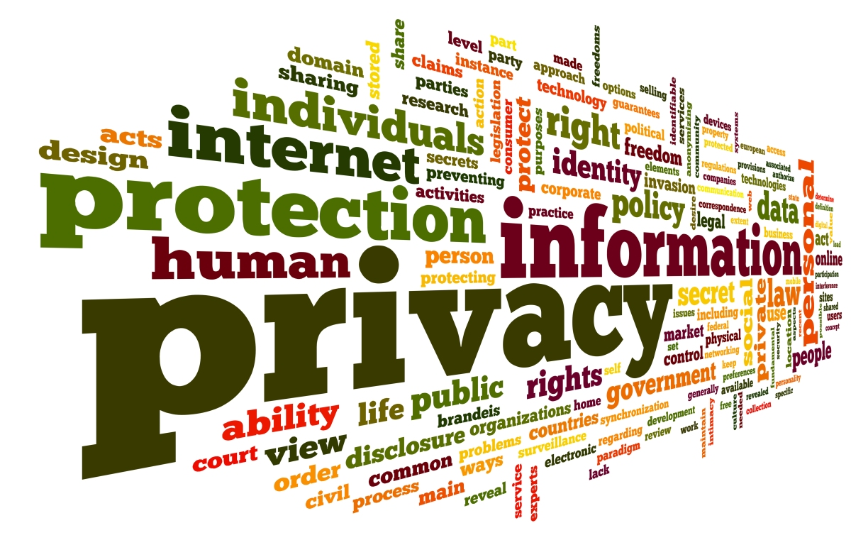 essay on internet privacy and data security